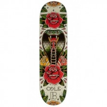 Cole Tradition 8.25""