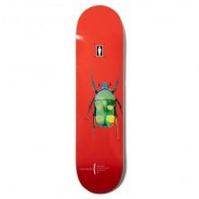 """Beetles Biebel 8"""""""